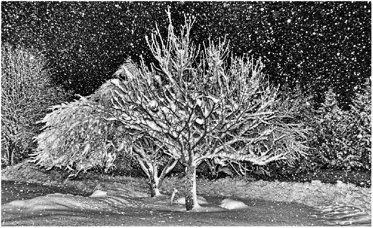 Snowstorm at Midnight by George S. Gati