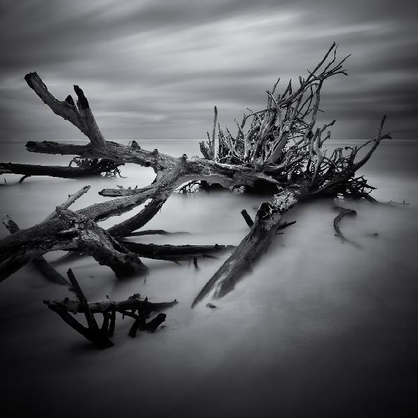 """Legacy"", from the series Against the Sea by Scott Bolendz"