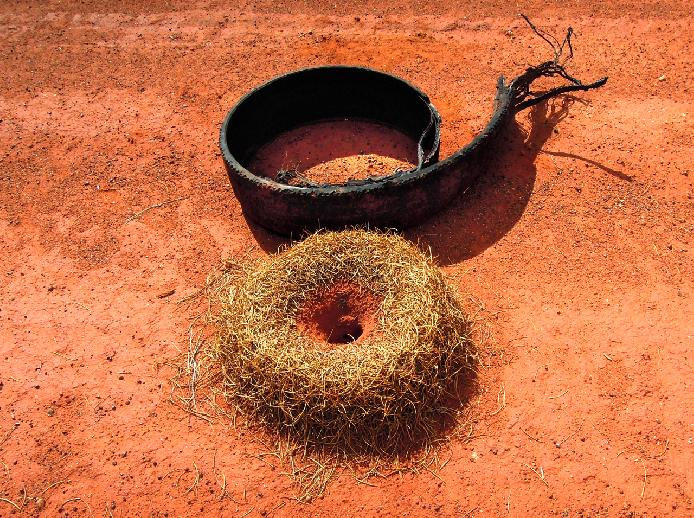 Tire and Mulga Ant Nest in the Desert by Karen Burgess