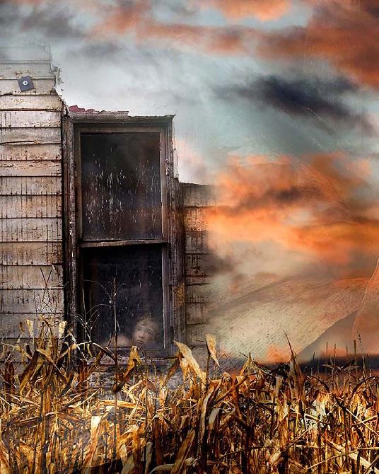Storm harvest. by Jeff Wiles