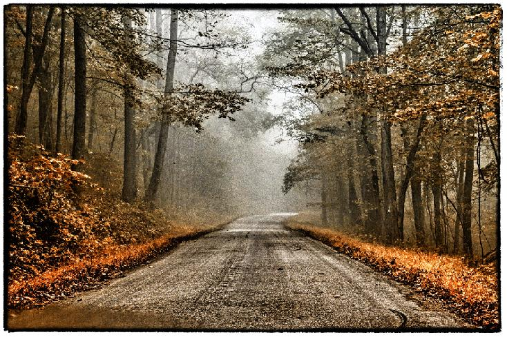 Country Road by Norma McGehee Woodward