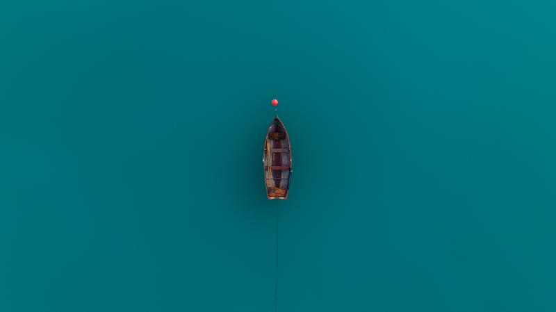 Solitude On Teal by Avian Cyclops